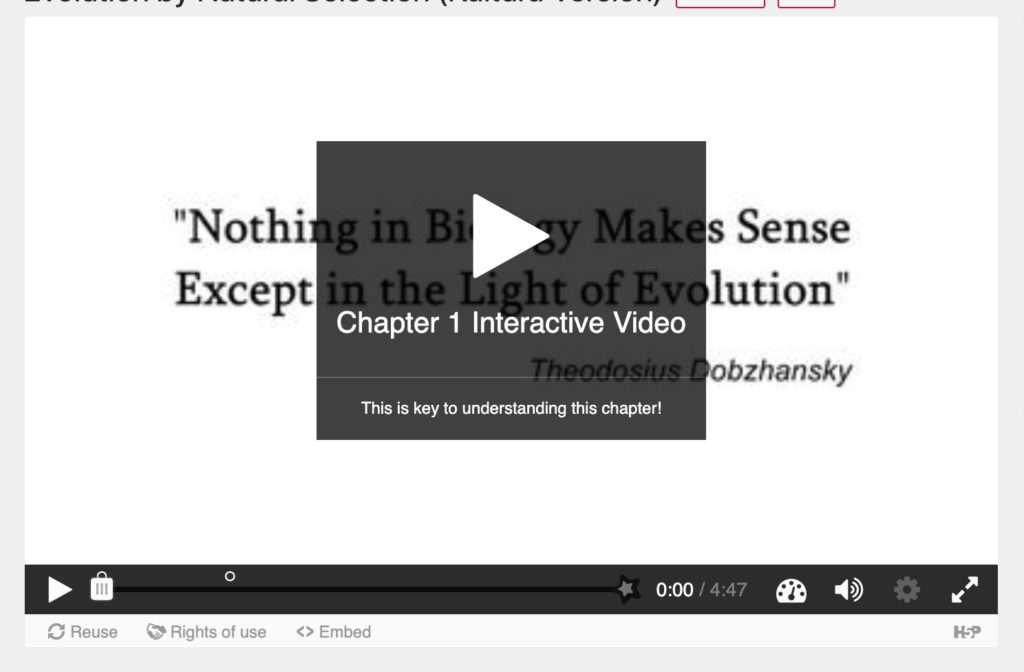 A preview of the playback screen shows a black semi transparent background centered on the video with a large play button, below this are the title and description text entered above.